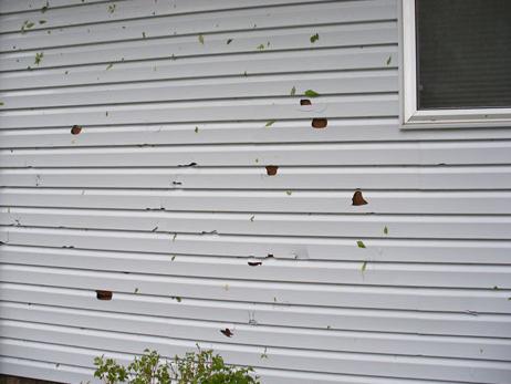 Siding titan exteriors rockford il for Hail damage vinyl siding
